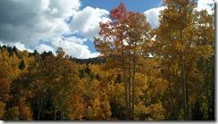 Aspen Vista 2010