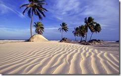 Dunas em Salvador na Bahia, Brasil (Dunes at Salvador, Bahia, Brazil)