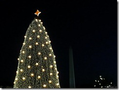 national christmas tree and washington monument at night