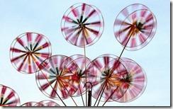 मेलों में चकरी Pinwheels at a Festival, Hyderabad, Andhra Pradesh