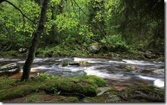 Vydra river, Šumava