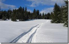 Příroda okolo vesnice Pernink, oblast Karlové Vary