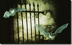 Mysterious Gate with Textured Wall, and Two Bats in Flight