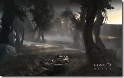 5_hog_outpost