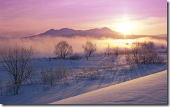 雪うさぎ  (Snowy dawn landscape near Hokkaido, Japan)