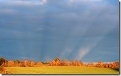 Ainava pie Tukuma, Latvijā (Landscape near Tukums, Latvia)