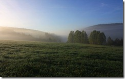 Morning meadow, Šumava