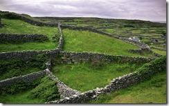 Stone walls on the island of Inisheer in Galway Bay, Ireland