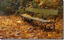 Oznaki jesieni (Evidence of Autumn)