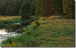 Rzeka Orzyc (Orzyc river )