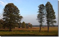 Łąki wczesnym popołudniem (Early afternoon on meadows)