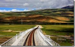 青藏铁路 (The scenery of Qinghai-Tibetan Railway)