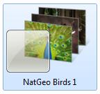 natgeobirds1themelogo