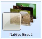 natgeobirds2themelogo