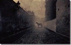 Horse on Cobbled Street, Prague, Czech Republic