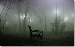 Fog in Copou Park, Iasi, Romania