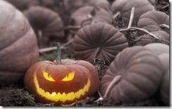 A Jack-o-Lantern in a Pumpkin Patch, Canada