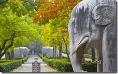Stone Statue Road elephants at Ming Xiaoling Mausoleum, Zijin Shan, Nanjing, Jiangsu, China