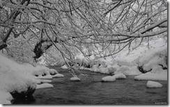 Murieston Water, Livingston, West Lothian, Scotland