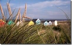 Dunes of Southwold, Waveney District, Suffolk, England, U.K.