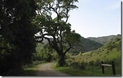 The Road Not Taken, north of San Luis Obispo, California, U.S.