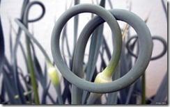 Garlic scath