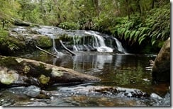 McLeans Creek, north of Greymouth, South Island, New Zealand