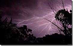 Electric beauty, taken in Gladstone, Queensland, Australia