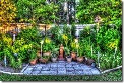 Corner Garden Painterly 4 HDR