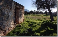 Wall and field, Cyprus