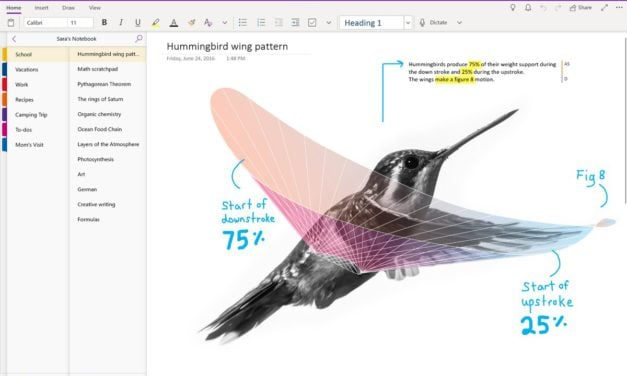 OneNote Updates for July 2018
