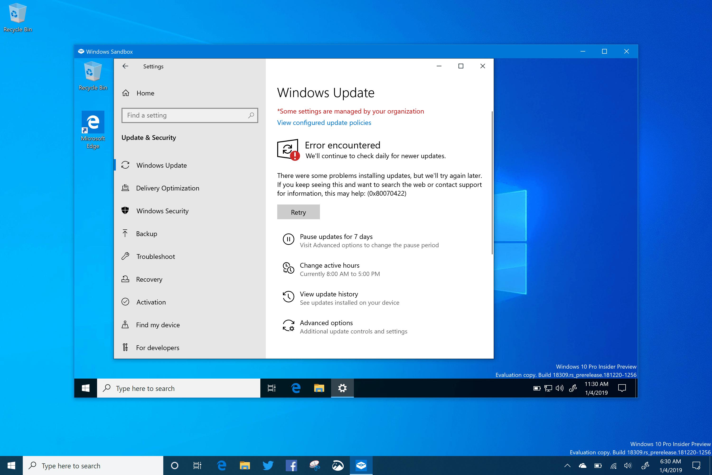 Windows Sandbox - Windows 10 (19H1) Build 18309