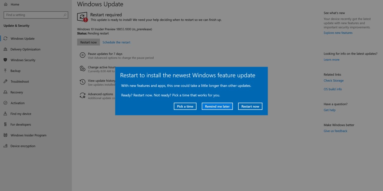 Windows 10 (20H1) Build 18855 Lands in Skip Ahead Ring
