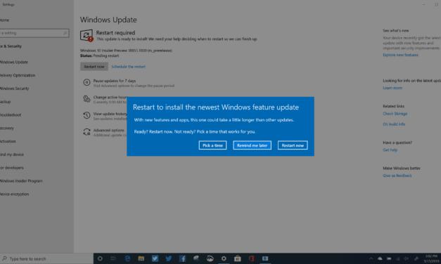 Windows 10 (20H1) Build 18855 Lands in Skip Ahead Ring