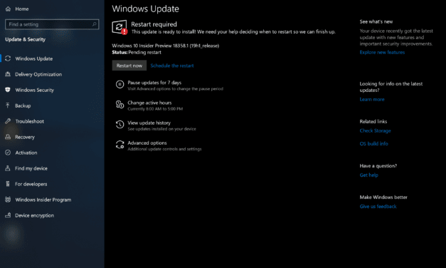 Windows 10 (19H1) Build 18358 Available in Fast Ring
