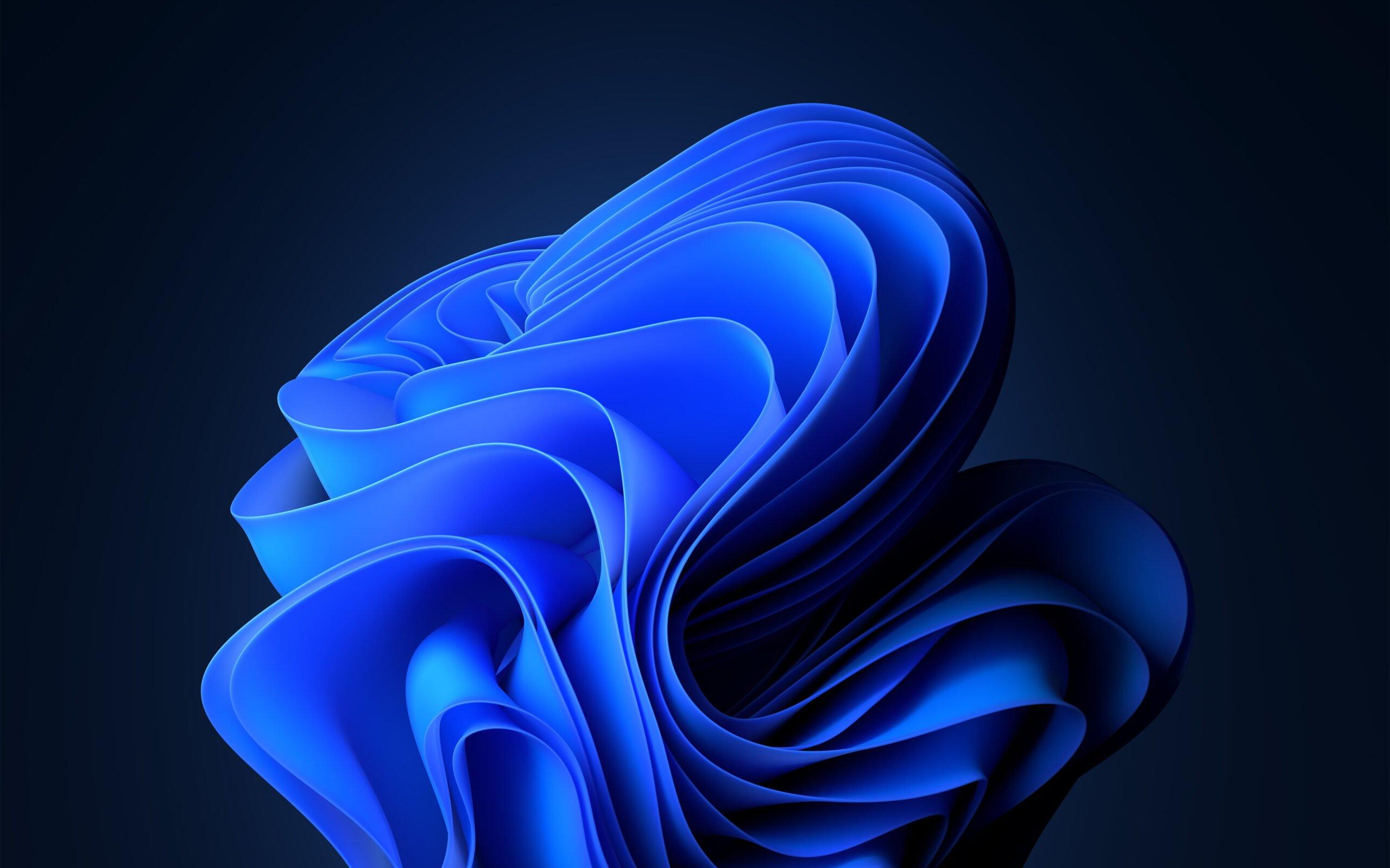 Windows 11 - Bloom Theme Image - Microsoft